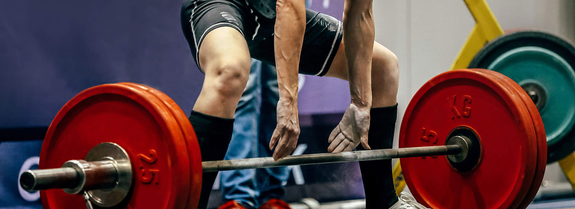 Top 5 Best Gyms To Join near St. Petersburg FL, Top 5 Best Gyms To Join near Tampa FL, Top 5 Best Gyms To Join near the Florida Panhandle
